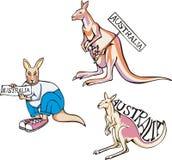 Australia - kangaroos Royalty Free Stock Image