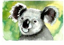 Australia koala portrait vector illustration