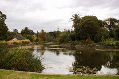 Australia Melbourne Royal Botanic Gardens. Green stock photos