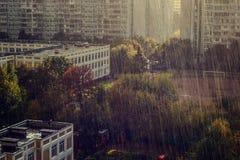 australia miasta nsw fotografii deszcz Sydney wziąć fotografia royalty free