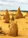 Australia national park Royalty Free Stock Photos