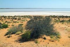 Australia, Nature. Lake Hart in South Australia stock photography