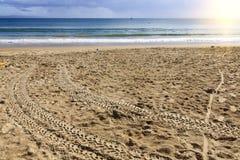 Australia Noosa coastline Royalty Free Stock Photos
