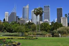 Australia, NSW, Sydney, ogród botaniczny i pejzaż miejski, Obrazy Stock