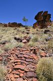 Australia, Northern Territory, McDonnell Range. Australia, NT, footpath on rocks of Trephina Gorge in East McDonnell Range national park stock image
