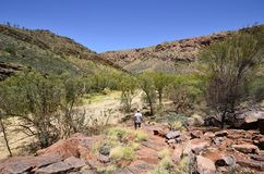 Australia, Northern Territory, McDonnell Range. Australia, NT, woman on footpath in Trephina Gorge in East McDonnell Range national park royalty free stock photos
