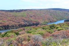 Australia occidentale del fiume di Margaret Immagine Stock Libera da Diritti