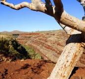 Australia occidentale di Karijini NP Pilbara Fotografia Stock