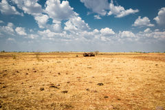 Australia outback Stock Photography