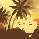 Australia Palm tree. Tropical background with palm tree Stock Image