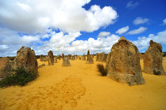 Australia: Pinnacles desert Royalty Free Stock Photos