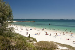 australia plażowy cottesloe Perth western Obrazy Royalty Free