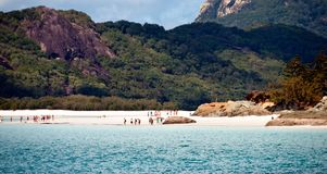 australia plaża whitehaven Zdjęcie Royalty Free