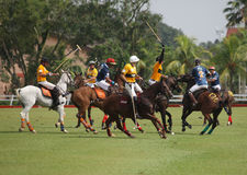 Australia Polo vs India Polo. Australian raise his Mallet preparing to make a clearance after being attack by Indian Player at 2011 FIP World Cup Polo Zone D. On Royalty Free Stock Images