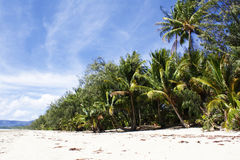 Australia. Portowy Douglas. 4 mil plaża obraz royalty free