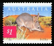 AUSTRALIA - postage stamp. AUSTRALIA - CIRCA 2002: A stamp printed in Australia shows bilby, circa 2002 royalty free stock photos
