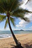 Australia, Queensland, ensenada de la palma, Palm Beach imagen de archivo