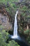 Australia Queensland Waterfall in rainforest Stock Images