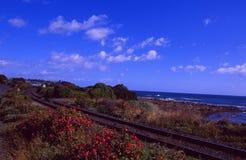 Australia: The railyway at the north coast of Tasmania. Along the Tasmania Sea stock images