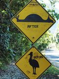 Australia roadsigns, Image of a defaced road sign for the Cassowary Bird. In Australia showing a before and after image of the bird Royalty Free Stock Images