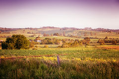 Australia rural escénica Imagen de archivo libre de regalías