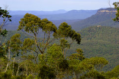 Australia's Blue Mountains Stock Photos