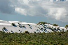Australia sand dunes into the bush Stock Image