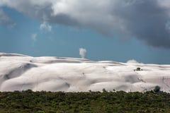 Australia sand dunes into the bush Stock Photography
