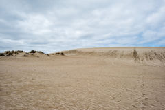 Australia sand dunes into the bush Royalty Free Stock Photos
