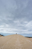 Australia sand dunes into the bush Stock Images