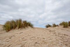 Australia sand dunes into the bush Stock Photo