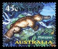AUSTRALIA - sello fotos de archivo