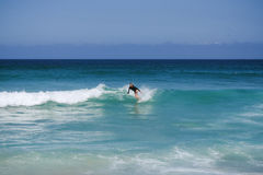 Australia Sydney Bondi Beach Surfing. Sea Stock Image