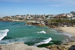 Australia: Tamarama beach city view with surfers Royalty Free Stock Image