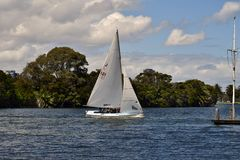 Australia, Victoria, Melbourne, Albert Park. Australia, sailing boat in Albert Park Lake in Melbourne stock images