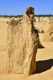 Australia, WA, The Pinnacles in Nambung National Park. Preferred tourist attraction and natural landmark royalty free stock photos