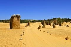 Australia, WA, Pinnacles, National Park. Australia, WA, unsealed road through The Pinnacles in Nambung National Park, preferred tourist attraction and natural stock photos