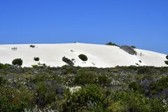 Australia, WA, Sand Dunes. Along Indian Ocean Royalty Free Stock Images