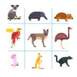 Australia wild animals cartoon popular nature characters flat style and australian mammal aussie native forest Stock Photos
