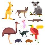 Australia wild animals cartoon popular nature characters flat style and australian mammal aussie native forest Stock Image