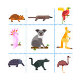Australia wild animals cartoon popular nature characters flat style and australian mammal aussie native forest Stock Photography