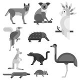 Australia wild animals cartoon popular nature characters flat style black white and australian mammal aussie native Royalty Free Stock Photo