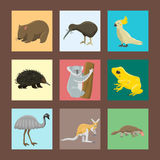 Australia wild animals cartoon popular nature characters flat style mammal collection vector illustration. Stock Photos