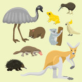 Australia wild animals cartoon popular nature characters flat style mammal collection vector illustration. Royalty Free Stock Photos