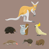 Australia wild animals cartoon popular nature characters flat style mammal collection vector illustration. Royalty Free Stock Photo