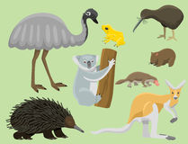 Australia wild animals cartoon popular nature characters flat style mammal collection vector illustration. Royalty Free Stock Image