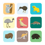 Australia wild animals cartoon popular nature characters flat style mammal collection vector illustration. Stock Photo