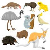 Australia Wild Animals Cartoon Vector Collection Royalty Free Stock Photography