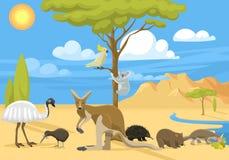 Australia wild life vector illustration. Stock Images
