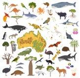 Australia y la flora y la fauna de Oceanía trazan, los elementos planos Animal ilustración del vector